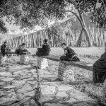 Young Monks at morning prayers, Chimi Lhakhang, Bhutan