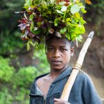 Portrait of a young man with chat on his head, Ethiopia.