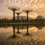 Morning Reflections, Gardens by the Bay, Singapore