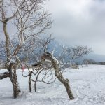 Niseko,  a popular ski resort in Hokkaido