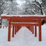 The vermillion torii shrine gates of the Tenma-inari shrine in Togakushi, Nagano in deep fresh powder snow.
