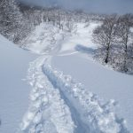 Beautiful snowy landscape and fresh powder ascending Mount Hanatate-Yama