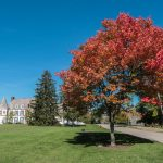 Autumn at Middlebury College