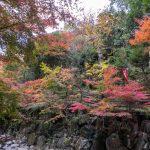 Beautiful grounds of Jingon-ji, Nakatsu