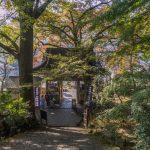 Fuki-ji Temple, Tashibu