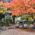 Classical Japanese garden in the Ohara Residence, Kitsuki