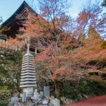 Futago-ji, Kunisaki with carpet of fallen maple leaves
