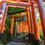 The vermillion tori pillars at Fushimi-inari Temple in Kyoto
