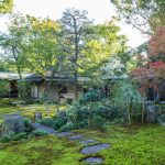 Moss garden at Oubai-in Temple in Kyoto