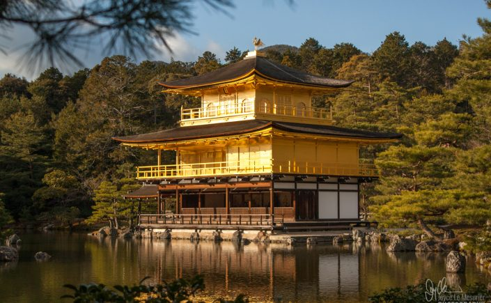 Kinkakuji (Golden Temple), Kyoto