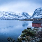 Robruer in Selfjord, Lofoten