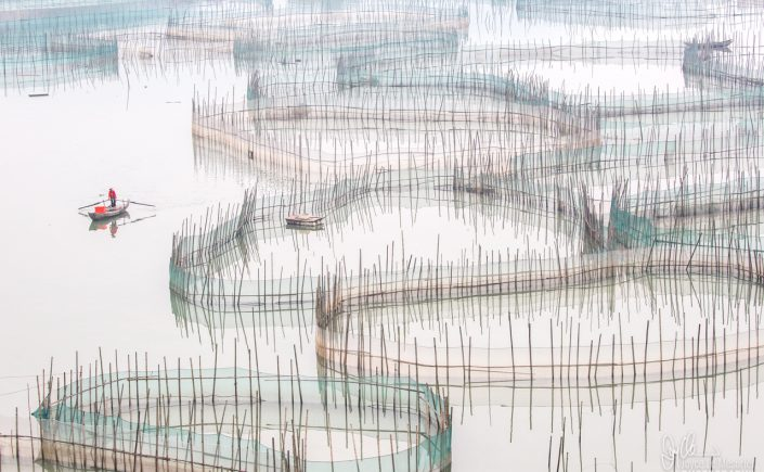 The Lone Rower, Xiapu, China