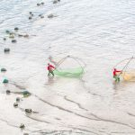 Fishermen with  traditional fishing nets