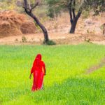 Woman in Red. Village outside Udaipur, Rajasthan, India