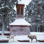 Reindeer Procession, Jokkmokk.