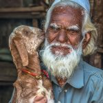 Man and his goat, local market in Udaipur