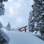 A normally tall Tori gate peeps out over deep powder snow in Hijiori Onsen, its base completely submerged